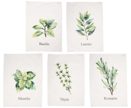 Set strofinacci Aroma con motivi di erbe, 5 pz., Bianco latteo, verde