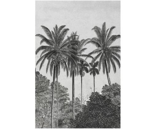 Papier peint photo Palms, Gris, noir, blanc