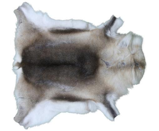 Afombra de piel de reno Dobri, Piel de reno, Tonos marrones, blanco, Piel de reno única 198