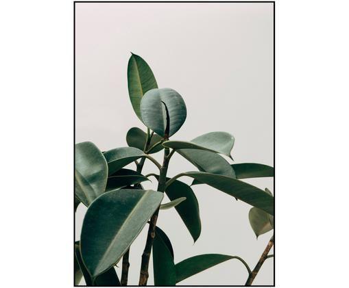 Gerahmter Digitaldruck Ecologique, Bild: Digitaldruck auf Papier (, Rahmen: Hochdichte Holzfaserplatt, Grau, Grün, 30 x 40 cm