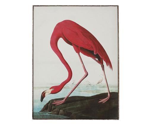 Lienzo enmarcado Flamingo