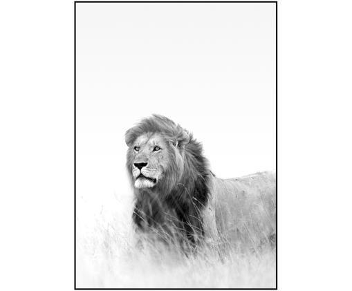 Zarámovaný digitální tisk Hunter, Černá, bílá