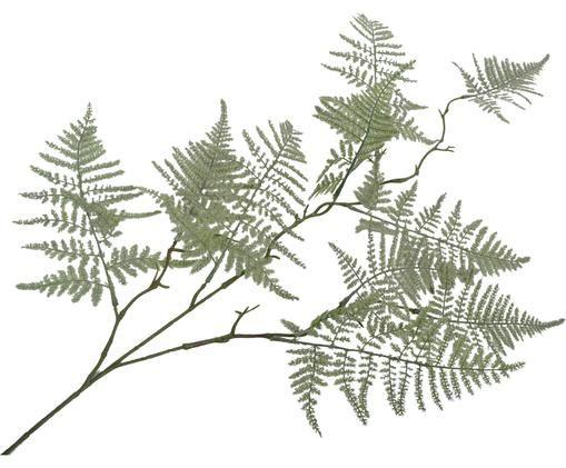 Fiore artificiale felci Minie, Poliestere, metallo, Verde, Lung. 89 cm
