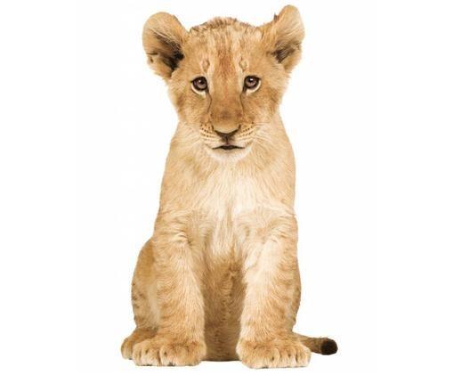 Naklejka ścienna Lion Cub, Samoprzylepna folia winylowa, matowa, Brązowy, S 28 x W 48 cm