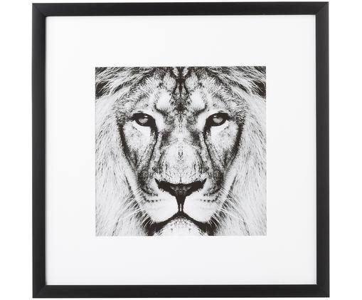 Oprawiony druk cyfrowy Lion Close Up, Stelaż: tworzywo sztuczne, Czarny, biały, S 40 x W 40 cm