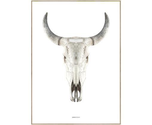 Impression numérique encadrée Cow Skull, Brun, beige, blanc