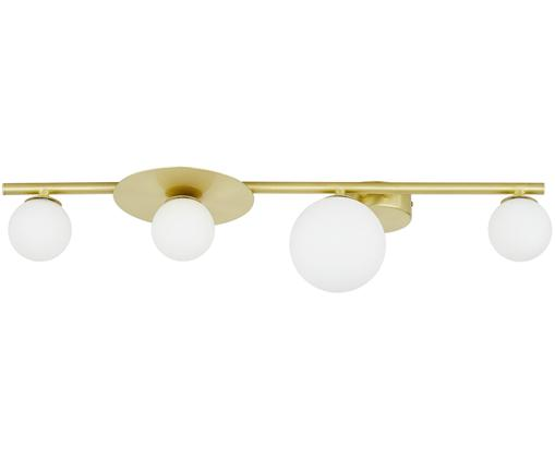 Lampada a soffitto Ciara, Paralume: vetro, Baldacchino e rilegatura: ottone opaco Paralume: bianco, Larg. 69 x Alt. 16 cm