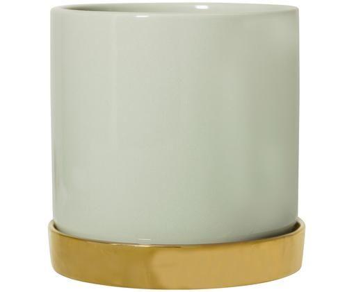 Vaso per piante Elin, Recipiente: verde Sottobicchiere: dorato
