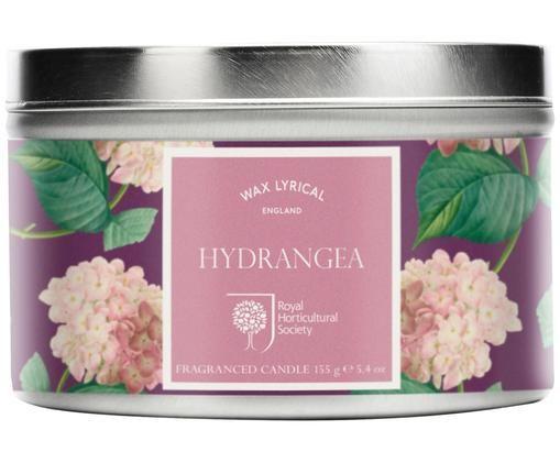 Bougie parfumée Tin (hortensia), Rose, lilas