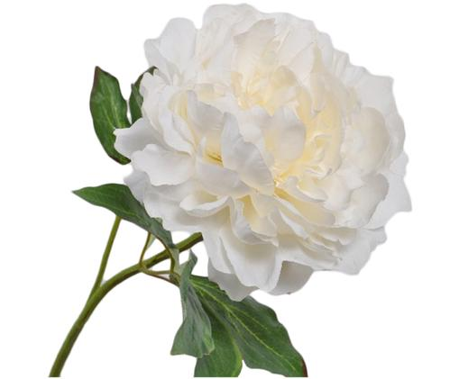 Sztuczny kwiat piwonii Onia, Biały, kremowy