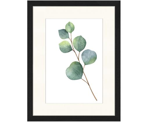 Gerahmter Digitaldruck Eucalyptus II, Bild: Grün, Weiß Rahmen: Schwarz