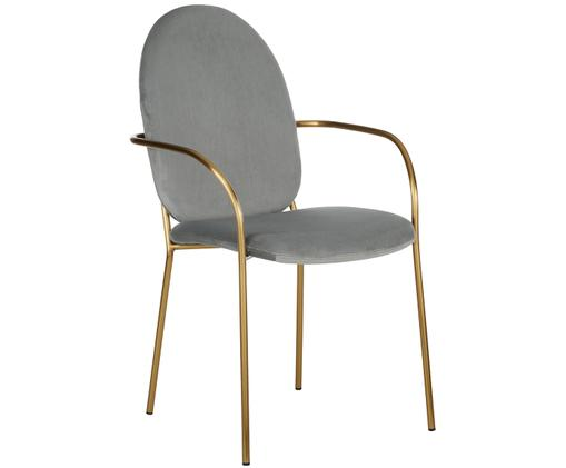 Sedia con braccioli in velluto Mary, Rivestimento: velluto (poliestere) 15.0, Struttura: metallo rivestito, Grigio, Larg. 55 x Prof. 64 cm