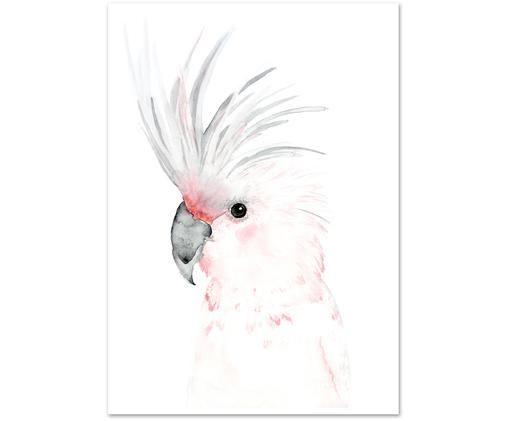 Plakat Kakadu, Druk cyfrowy na papierze, 200 g/m², Biały, szary, różowy, S 21 x W 30 cm