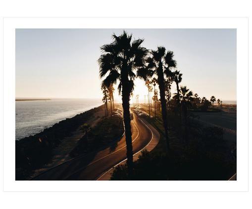 Plakat Palms, Odcienie brązowego, odcienie beżowego, czarny