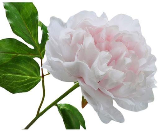 Kunstblume Pfingstrose Onia, Blüte: Kunststoff, Stiel: Metall, Rosa, L 57 cm