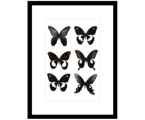 Impression numérique encadrée Butterflies Dark, Noir, blanc