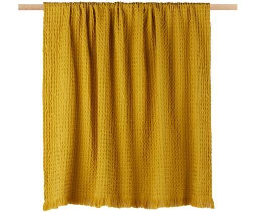 Baumwoll-Plaid Tempy mit strukturierter Oberfläche, Baumwolle, Gelb, 130 x 200 cm