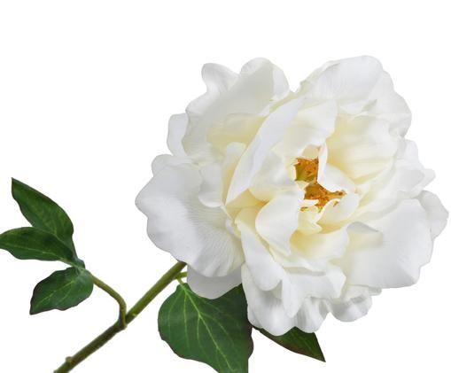Sztuczny kwiat piwonii Ania, Kremowy