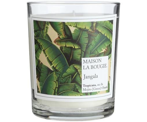 Vela perfumada Jangala (limón, mentayalbahaca), Recipiente: vidrio, Blanco, verde, Ø 8 x Al 9 cm