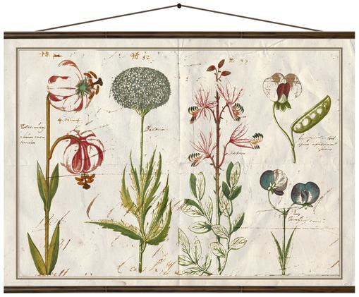 Stampa digitale su tela Flora, Multicolore