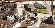 Finca-Lounge