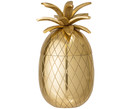 Cubitera Pineapple
