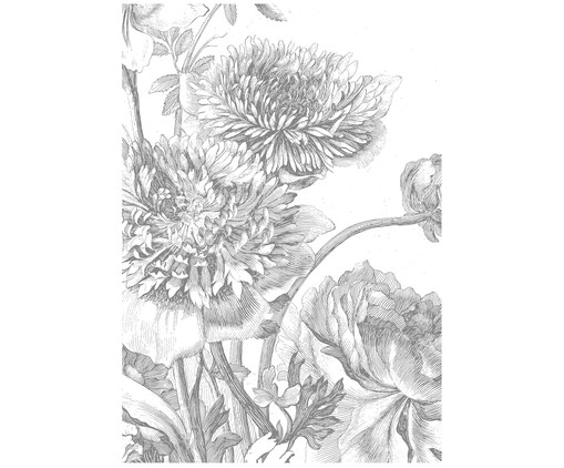 Papier peint photo Engraved Flowers, Gris, blanc