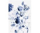 Fototapeta Royal Blue Flowers