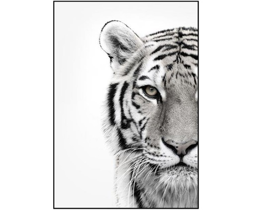Stampa digitale incorniciata White Tiger, Nero, bianco