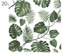 Sevilletas de papel Monstera, 20 uds.