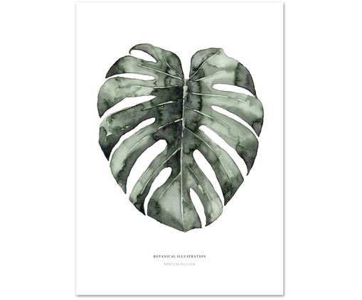 Plakat Urban Monstera